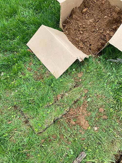 covering up after septic tank plumbing services